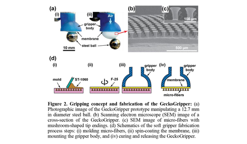 Geckogripper: A soft, inflatable robotic gripper using gecko-inspired elastomer micro-fiber adhesives