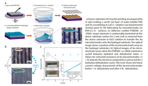 Transfer Printing of Metallic Microstructures on Adhesion-Promoting Hydrogel Substrates