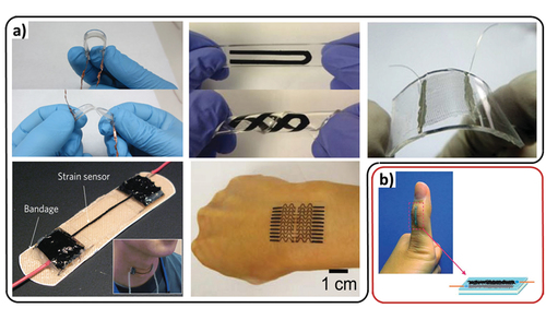 Stretchable, Skin-Mountable, and Wearable Strain Sensors and Their Potential Applications: A Review
