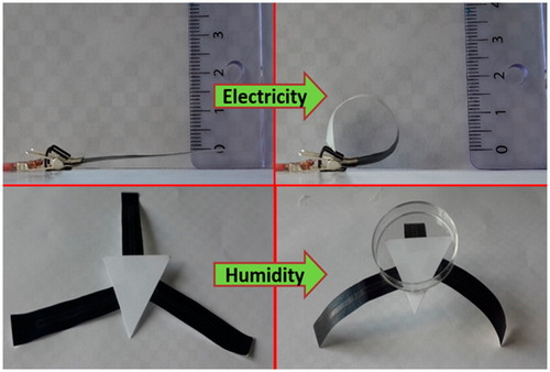 High-Performance Multiresponsive Paper Actuators
