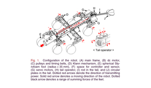 Tail-Assisted Mobility and Stability Enhancement in Yaw/Pitch Motions of a Water-Running Robot