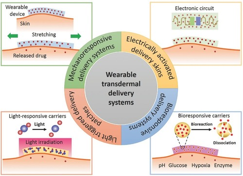 Recent Advances in Wearable Transdermal Delivery Systems