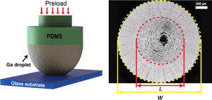 Wrinkling Instability and Adhesion of a Highly Bendable Gallium Oxide Nanofilm Encapsulating a Liquid-Gallium Droplet