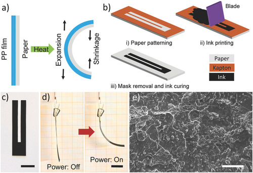 Self-Sensing Paper Actuators Based on Graphite–Carbon Nanotube Hybrid Films