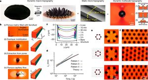 Multifunctional ferrofluid-infused surfaces with reconfigurable multiscale topography