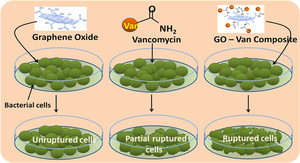 Graphene oxide synergistically enhances antibiotic efficacy in Vancomycin resistance Staphylococcus aureus