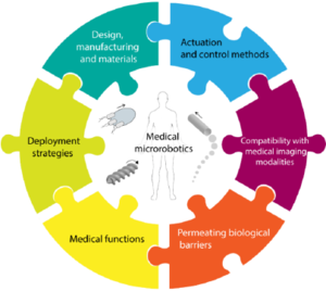 Translational prospects of untethered medical microrobots