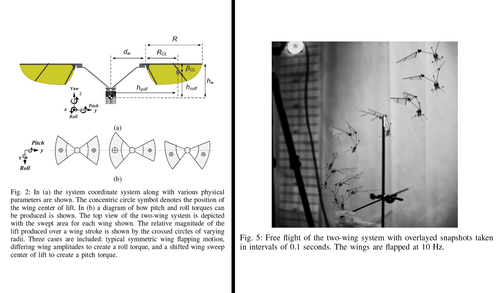 Platform design and tethered flight of a motor-driven flapping-wing system