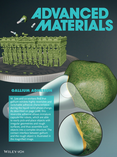 Gallium Adhesion: Phase Change of Gallium Enables Highly Reversible and Switchable Adhesion (Adv. Mater. 25/2016)