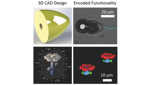 3D Chemical Patterning of Micromaterials for Encoded Functionality