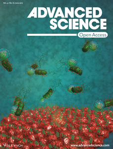 Bioadhesive Bacterial Microswimmers for Targeted Drug Delivery in the Urinary and Gastrointestinal Tracts