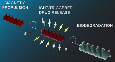 Light-Triggered Drug Release from 3D-Printed Magnetic Chitosan Microswimmers