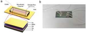 Microfluidics Integrated Lithography‐Free Nanophotonic Biosensor for the Detection of Small Molecules