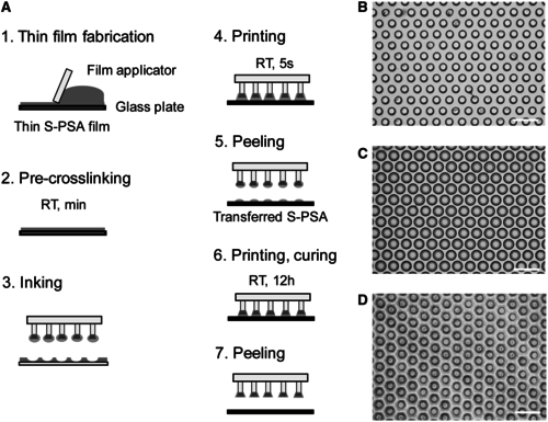Bio-inspired composite microfibers for strong and reversible adhesion on smooth surfaces
