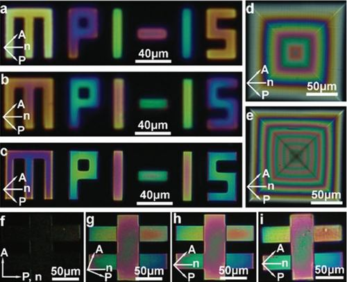 Microscale Polarization Color Pixels from Liquid Crystal Elastomers