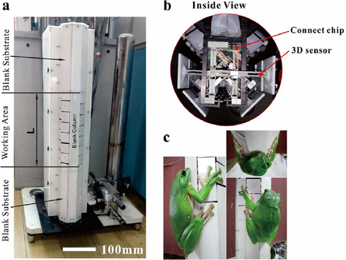 A force-measuring and behaviour-recording system consisting of 24 individual 3D force plates for the study of single limb forces in climbing animals on a quasi-cylindrical tower