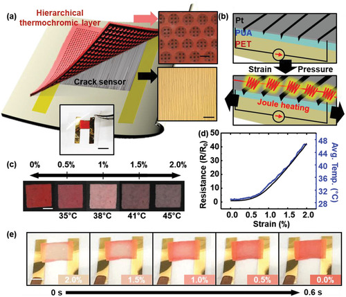 Strain-Visualization with Ultrasensitive Nanoscale Crack-Based Sensor Assembled with Hierarchical Thermochromic Membrane