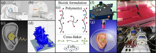 The adoption of three-dimensional additive manufacturing from biomedical material design to 3d organ printing