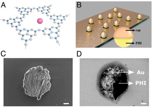 Carbon nitride-based light-driven microswimmers with intrinsic photocharging ability