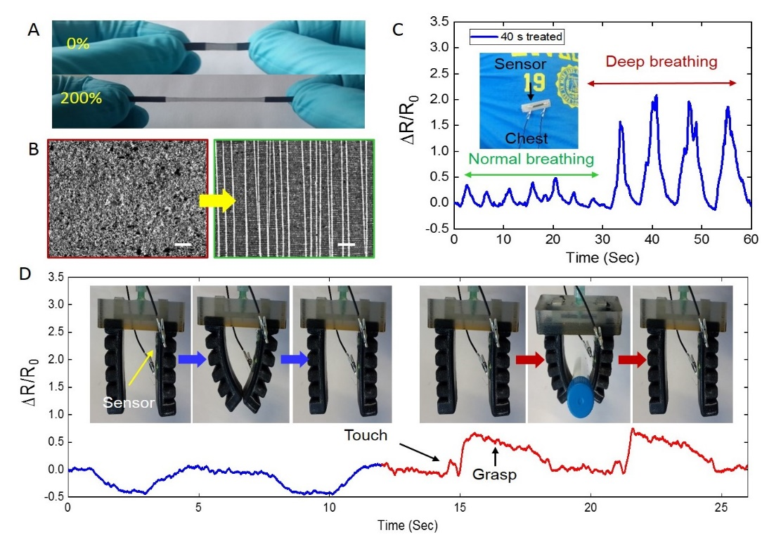 Highly stretchable and ultrasensitive strain sensors
